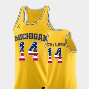 Yellow Men's College Basketball Rico Ozuna-Harrison Michigan Jersey USA Flag #14 761054-509