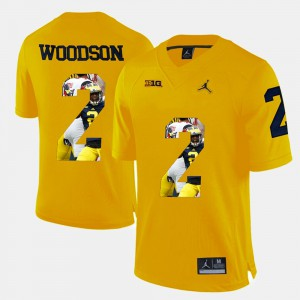 Charles Woodson Michigan Jersey Yellow Player Pictorial Men #2 733858-227